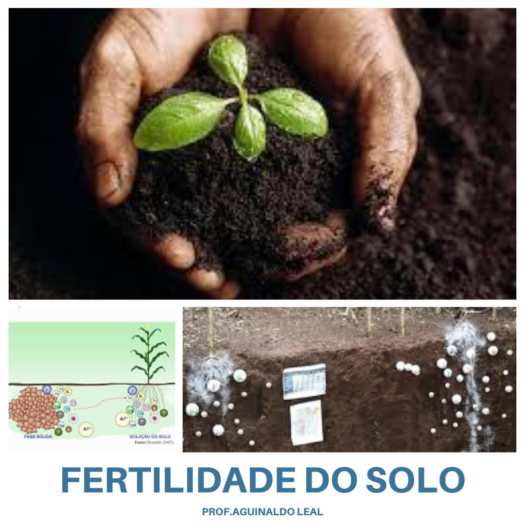 4001.000.206-4  FERTILIDADE DO SOLO E NUTRIÇÃO DE PLANTAS (2°/2020)